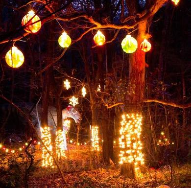 Holiday Lights and Décor