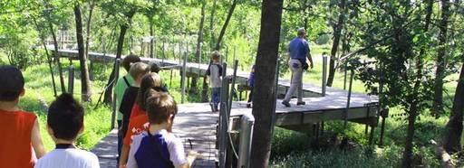 Campers pictured walking through Heard Wetlands