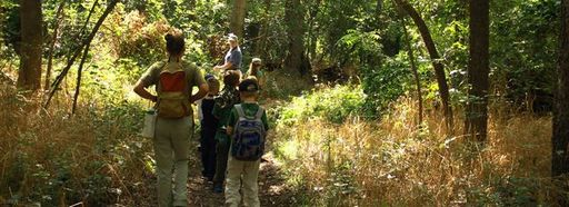 Campers spend time in our 289-acre nature preserve