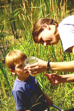 Campers will experience hands-on adventures